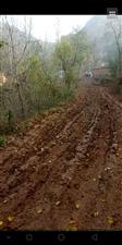农村的土路