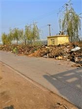 东夏镇公路垃圾成片了