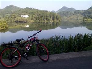 闲着山地自行车,9成新,低价出售。面议。
