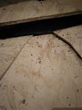 村民房子被水泡三天两晚导致出现地基下陷,墙面出现大量裂痕