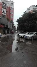 东阳酒店后面,红甘蔗背后,星河明苑外面,应该是下水道,流一二十天了。