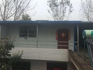 低价转让优质钢架结构复合板房,澳门葡京平台县大桥乡联系人电话:18738756586