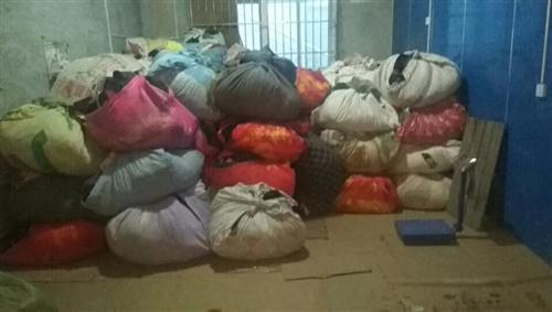 高价回收废旧衣物,新旧成色不限,布料不限,另在各县区招收代理,电话:13109636353     ...