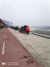 安康江北西城阁往西走的河堤上无人打扫卫生