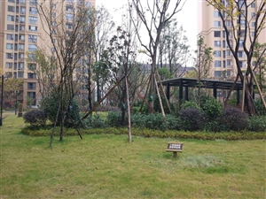 汉水秀城一期1幢2-16-2 简装,地暖恒温