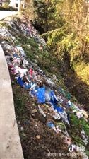 村里的垃圾何时才能得到解决?