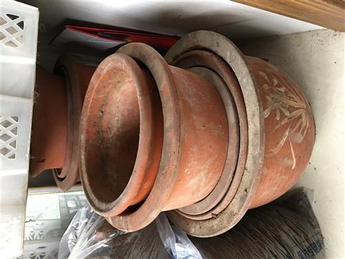 土陶花盆,因防護欄沉重能力有限,現處理掉,有意者請聯系。