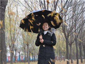 12月5日,细雨蒙蒙,在杞县经四路杞柳大道两旁种植的千余棵柳树寒风摇曳,洒洒落叶把大地铺的金黄金黄,