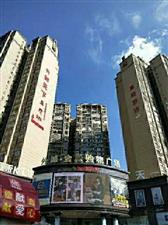 外滩一楼黄金旺铺火热销售中,10―30平方,总价15万―30万,即买即收租。