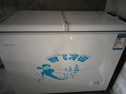 新飞冰柜,九层新,没有用,