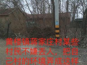 青州市黄楼镇某些村民不嫌丢人,把自己村的环境弄成这样!希望有关部门能够尽快解决此环境问题