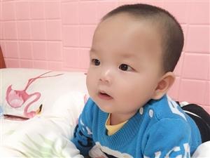 1009刘铭轩