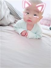 1035卓俊宸