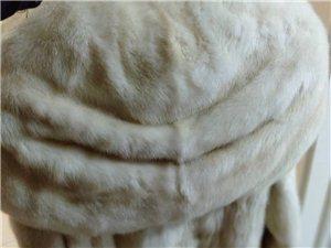 因急需用钱,现将身穿一万多买的皮草,出卖,5000不意价,xxs 码,身高1.65——170都能穿,...