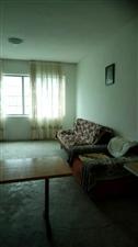 紫江花园3室 1厅 1卫800元/月