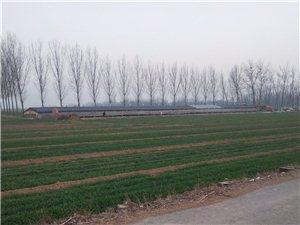�h境污染