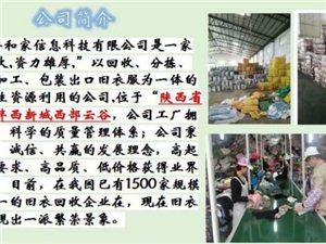 高價回收舊衣服18064349911