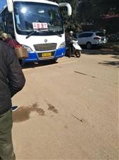 金沙平台罗江至太坪村的公交车逢罗江圩不到太坪