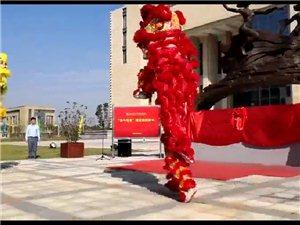 南康龙狮民俗表演 活动预订进行中!