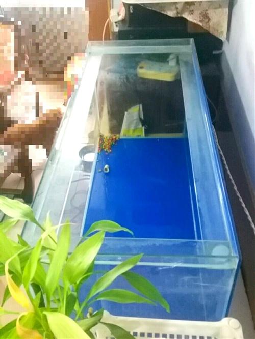 自用鱼缸9成新,尺寸100*40*45,因搬家便宜卖