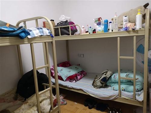 上下床,好质量铁质,九成新,用了一年不到,买成350一张,现在因搬家,低价出售。共两张。