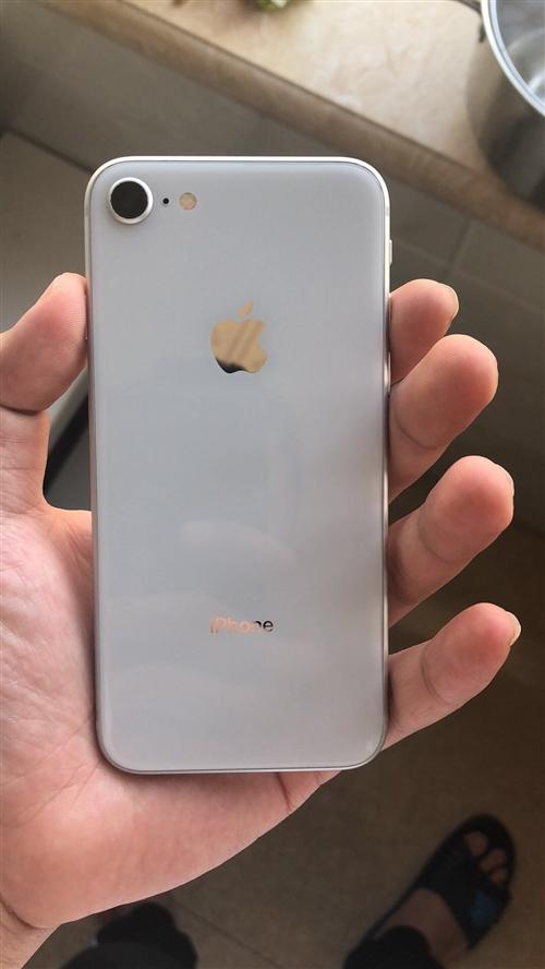 苹果8 三网通,今天5月份买的,一点磕碰没有,一直带壳,贴膜。大约98新,无拆无修,一点毛病没有。...
