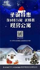 翡翠国际城精装修公寓、门面出售