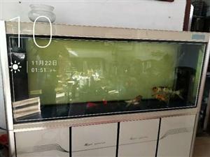 一点8米的底滤鱼缸