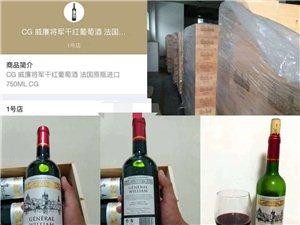 正品法國原瓶進口紅酒