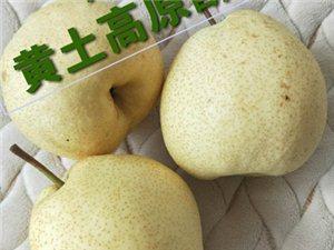 隰�h酥梨(十斤�b包�])