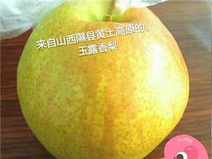 隰�h玉露香梨12�w�b(包�])