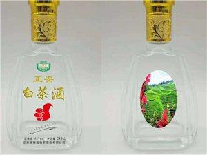 零售/批发白茶酒