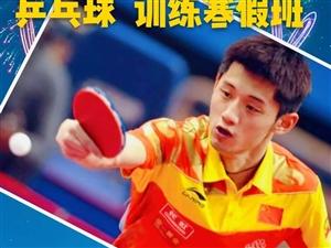 澄城县精英乒乓球培训馆《寒假训练班》开始报名了!