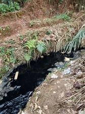 偷拍废水,臭气刺鼻。直接排到廉江河,谈何环保