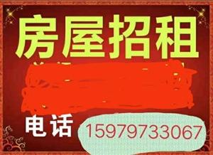 中华商贸城2室 0厅 1卫300元/月