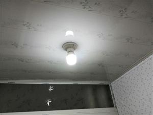 皇家翰林东300米3室 1厅 1卫精1500元/月