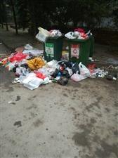 垃圾堆几天不清理