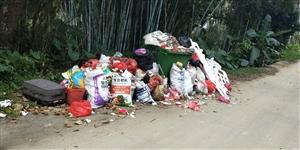垃圾堆积如山,远远便闻到刺鼻的臭味,路人:年前到现在,未见清理