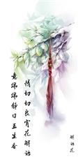 李杨胜吟稿/题玉人照/2019.2.15/