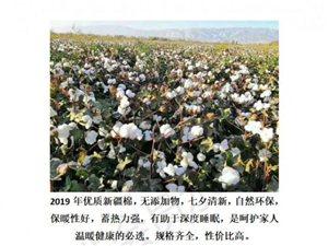 优质新疆棉被销售,招销售代理人员