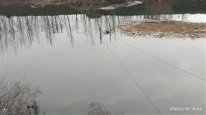 单桥孟河有人常年拦网捉鱼