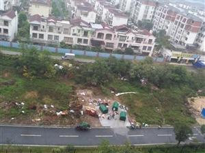 鹤山碧桂园公园1号自建垃圾场没人管管嘛