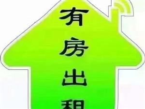 宝龙城市广场4室 带车位出租月租4200元/月