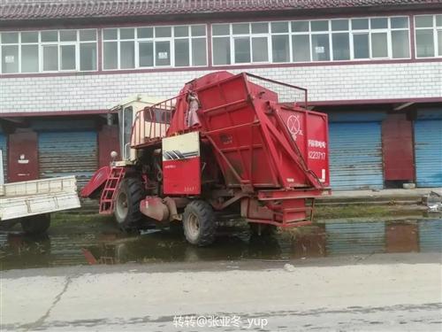 双箭王玉米收割机,2014年,玉柴发动机140的,4行,有需要的联系我