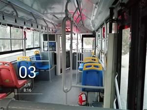 5路公交车司机半路停车,下车去公厕,近十分钟不发车