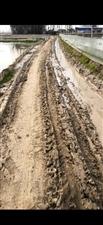 霍邱县北四村古井组的路,全程3百多米的路只修了108米