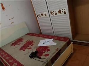 十字街2室 2厅 1卫750元/月