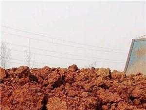 遷安境內出售黃土,填墳土,添墳土