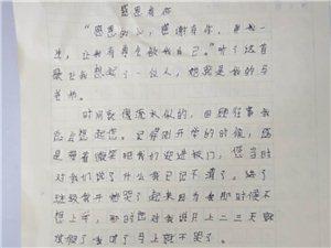 """2019""""外国语杯""""杞县学生作文大赛-008杨新雨"""