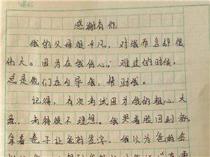 """2019""""外国语杯""""杞县学生作文大赛-011何晓雪"""